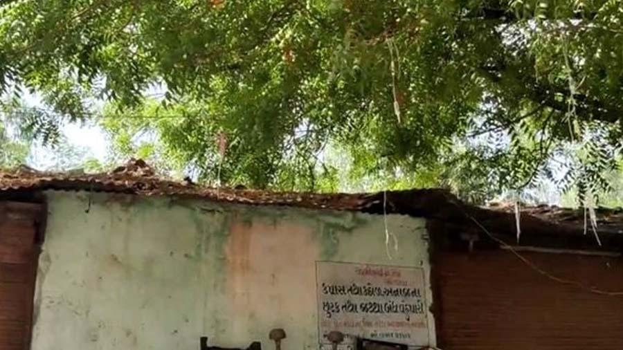 ગુજરાતના આ ગામમાં સુવિધાનો અભાવ, ઝાડની ડાળી પર બોટલો બાંધી દર્દીઓને ચઢાવાય છે